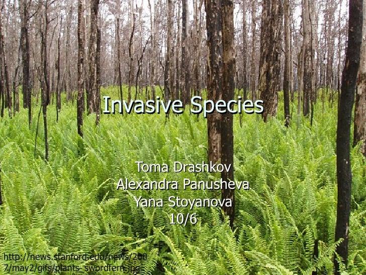 Invasive Species Toma Drashkov Alexandra Panusheva Yana Stoyanova 10/6 http://news.stanford.edu/news/2007/may2/gifs/plants...