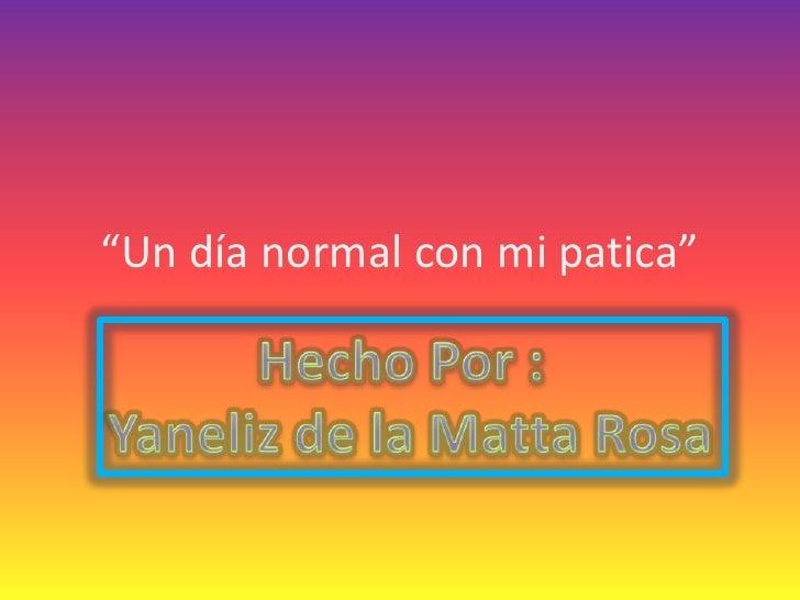 """""""Un día normal con mi patica""""<br />HechoPor : <br />Yaneliz de la Matta Rosa<br />"""