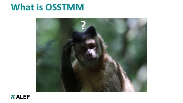 """OSSTMM: The """"Measure, Don't Guess"""" Security Testing Methodology Slide 3"""