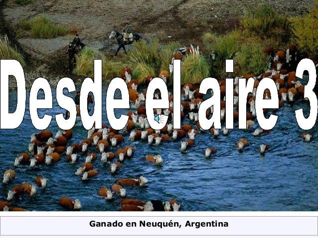 Ganado en Neuquén, Argentina