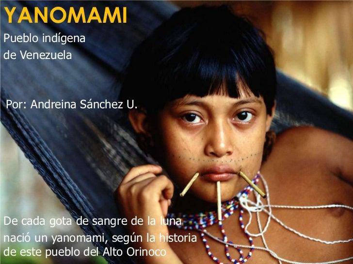 YANOMAMI<br />Pueblo indígena <br />de Venezuela<br />Por: Andreina Sánchez U.<br />De cada gota de sangre de la luna <br ...