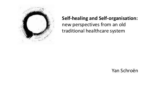 Self-healing and Self-organisation: new perspectives from an old traditional healthcare system Yan Schroën