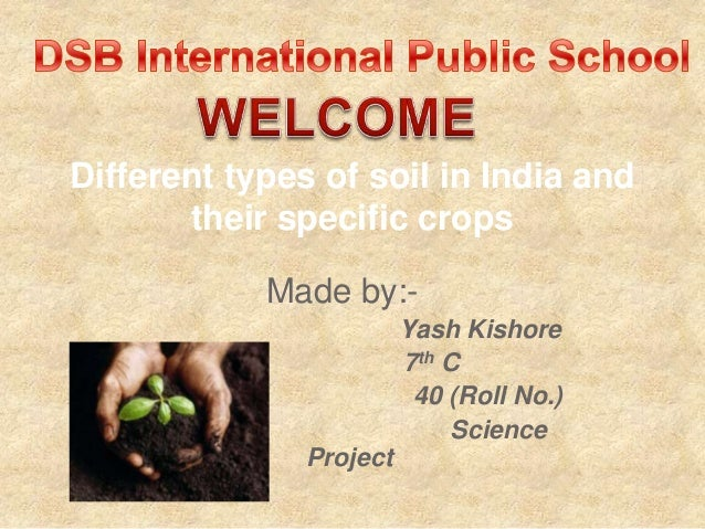 Made by:- Yash Kishore 7th C 40 (Roll No.) Science Project Different types of soil in India and their specific crops