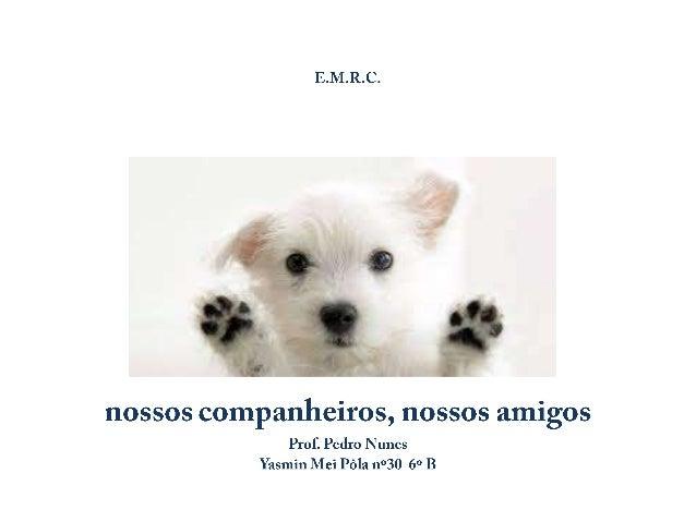 •  Artigo 1º 1. Todos os animais nascem iguais perante a vida e têm os mesmos direitos à existência.  • Artigo 2º 1. Todo ...