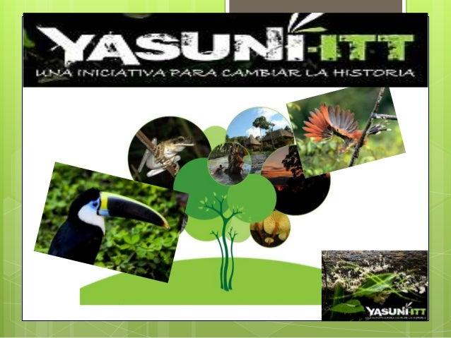 YASUNÍ Es uno de los lugares más biodiversos del mundo, además del hogar de una de las mayores variedades genéticas de ani...