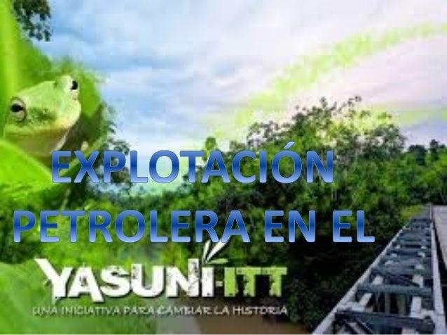• Yasuníesunparquenacionalecuatorianoquese extiendesobreunáreade9820kilómetros cuadradosenlasprovincias...