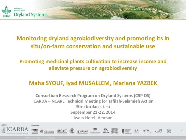 Monitoring dryland agrobiodiversity and promoting its in  situ/on-farm conservation and sustainable use  Promoting medicin...