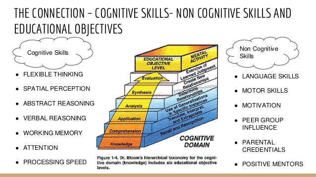 Cognition - Wikipedia