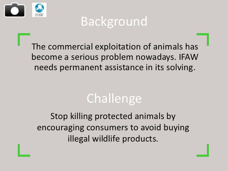 BackgroundThe commercial exploitation of animals hasbecome a serious problem nowadays. IFAW needs permanent assistance in ...