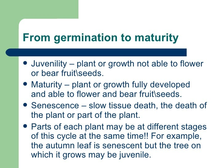 From germination to maturity <ul><li>Juvenility – plant or growth not able to flower or bear fruitseeds.  </li></ul><ul><l...
