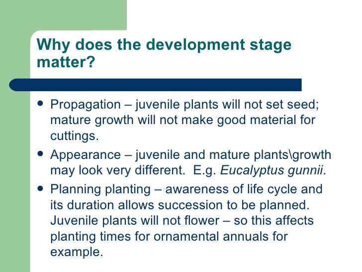 Why does the development stage matter? <ul><li>Propagation – juvenile plants will not set seed; mature growth will not mak...