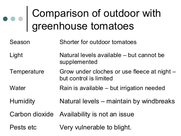 Comparison of outdoor with greenhouse tomatoes Season Shorter for outdoor tomatoes Light Natural levels available – but ca...