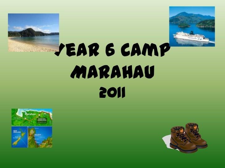 Year 6 Camp Marahau    2011
