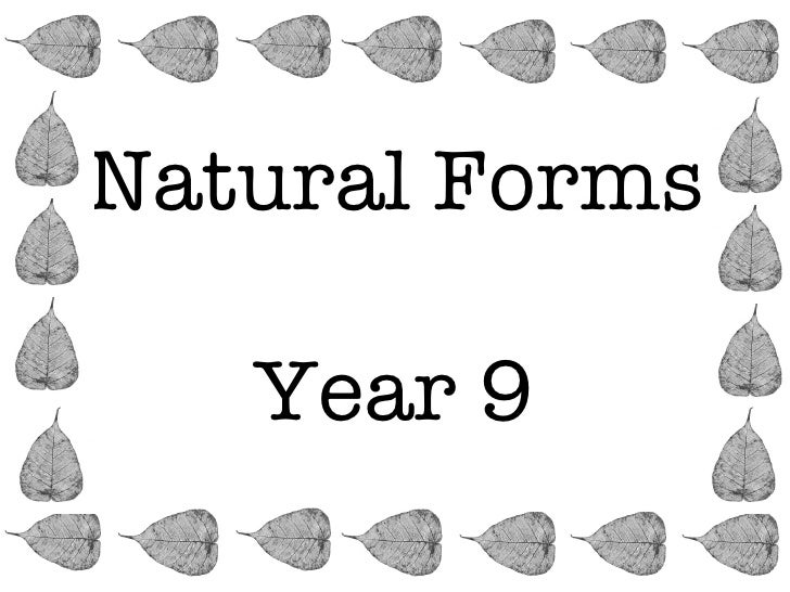 Natural Forms   Year 9