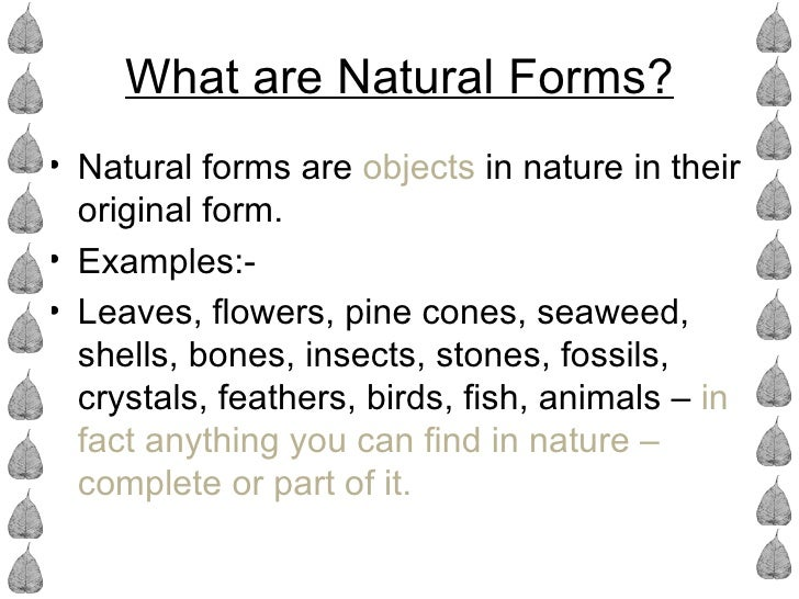 What are Natural Forms?• Natural forms are objects in nature in their  original form.• Examples:-• Leaves, flowers, pine c...