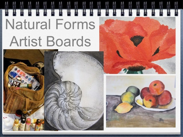 Natural Forms Artist Boards