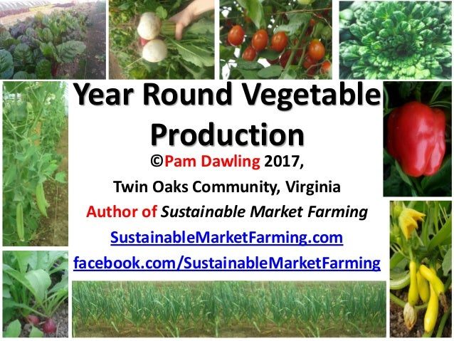 Year Round Vegetable Production ©Pam Dawling 2017, Twin Oaks Community, Virginia Author of Sustainable Market Farming Sust...