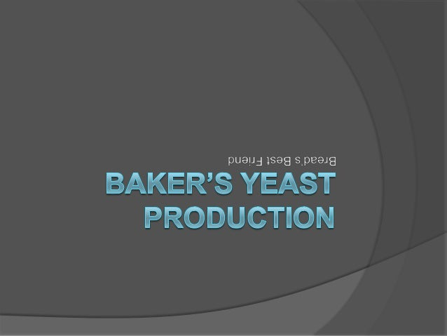 Contents  Overview  Introduction  Production  Types of Baker's Yeast  Yeast Testing  Applications  References