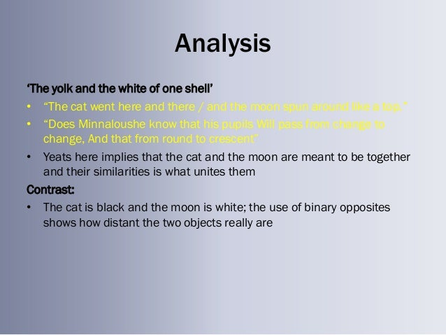 the shell poem analysis