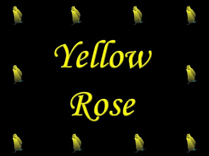 Yellow<br />Rose <br />