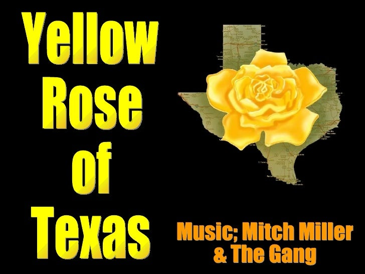 Yellow  Rose of  Texas Music; Mitch Miller & The Gang