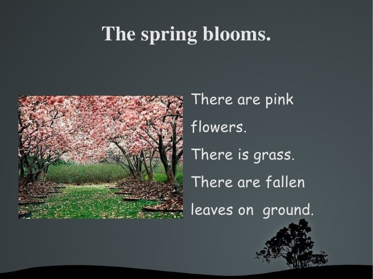 The spring blooms. <ul><li>There are pink