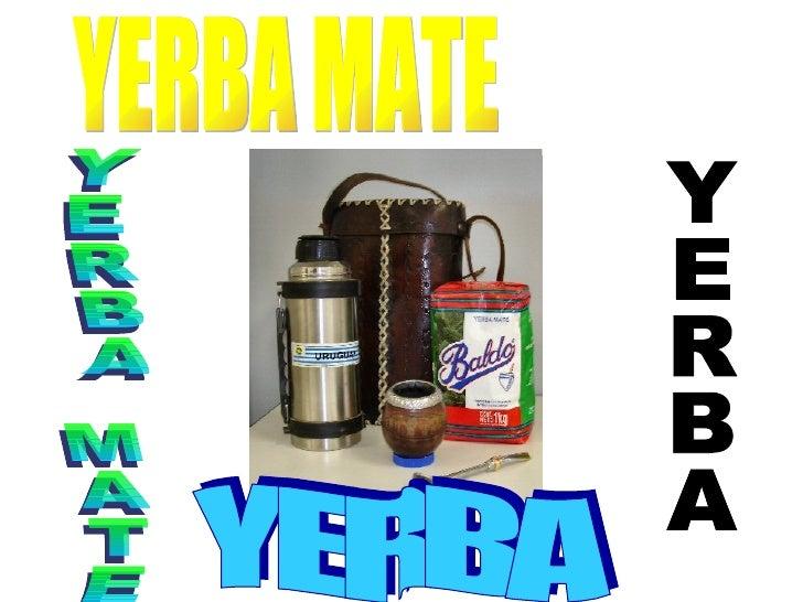 YERBA YERBA MATE YERBA MATE YERBA