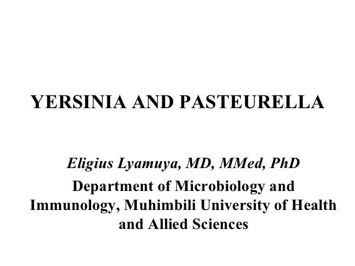 YERSINIA AND PASTEURELLA  Eligius Lyamuya, MD, MMed, PhD Department of Microbiology and Immunology, Muhimbili University o...