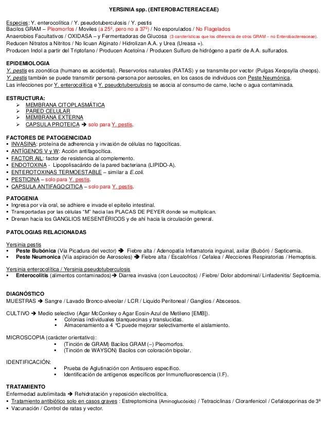YERSINIA spp. (ENTEROBACTEREACEAE) Especies: Y. enterocolítica / Y. pseudotuberculosis / Y. pestis Bacilos GRAM – Pleomorf...