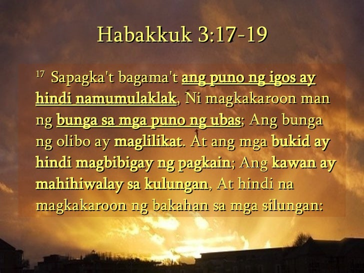 essays on habakkuk (habakkuk 1:2-4 esv bible) this was habakkuk's first complaint it seemed to him that god was not answering his prayers to the wickedness and injustice he saw around him.