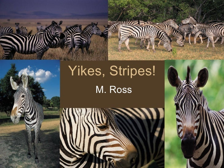 Yikes, Stripes! M. Ross