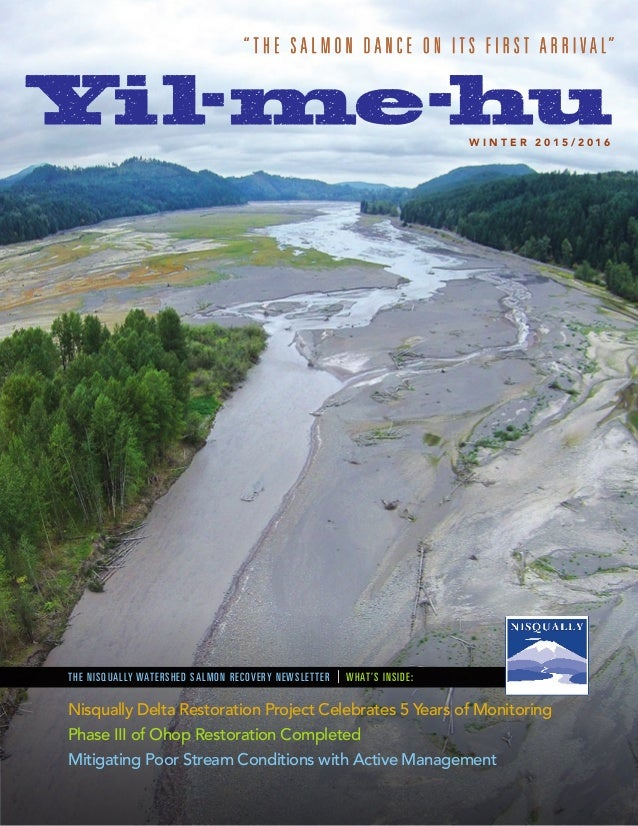 THE NISQUALLY WATERSHED SALMON RECOVERY NEWSLETTER | WHAT'S INSIDE: W I N T E R 2 0 1 5 / 2 0 1 6 Nisqually Delta Restorat...