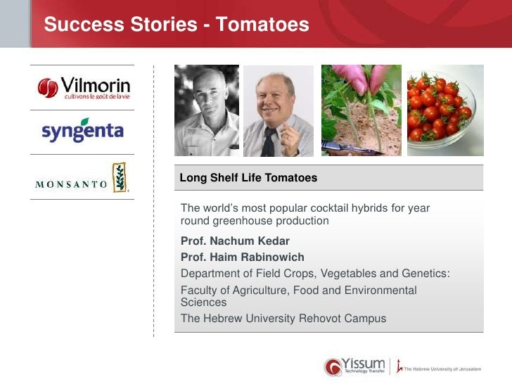 Success Stories - Tomatoes             Long Shelf Life Tomatoes             The world's most popular cocktail hybrids for ...