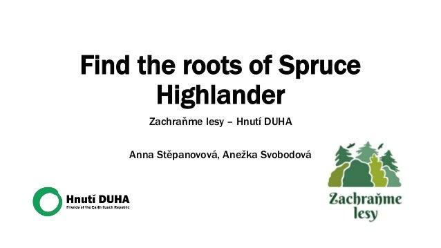 Find the roots of Spruce Highlander Zachraňme lesy – Hnutí DUHA Anna Stěpanovová, Anežka Svobodová