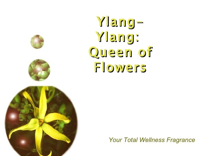 Ylang-Ylang:  Queen of Flowers Your Total Wellness Fragrance