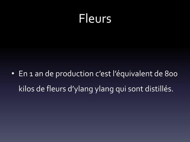 Fleurs  • En 1 an de production c'est l'équivalent de 800 kilos de fleurs d'ylang ylang qui sont distillés.