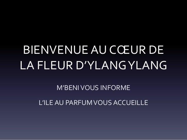 BIENVENUE AU CŒUR DE LA FLEUR D'YLANG YLANG M'BENI VOUS INFORME L'ILE AU PARFUM VOUS ACCUEILLE