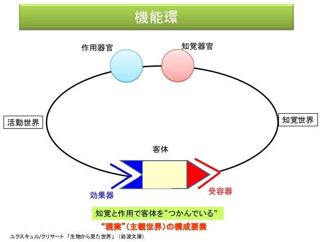 ユクスキュル「動物の環境と内的世界」(原著:1921, 前野佳彦訳:2012) • こうしてはじめて、すべての動物的行動の基幹に、ひとつの閉じ た環が埋め込まれていることがわかってくる。その環は行動に おいて、主体と客体を連結している。(p.7...