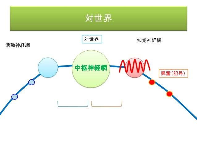 対世界 活動神経網 知覚神経網 興奮(記号) 対世界 興奮 興奮 興奮 さまざまな興奮(=記号)の 組み合わせから、事物を分別する。 中枢神経網
