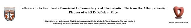 Influenza Infection Exerts Prominent Inflammatory and Thrombotic Effects on the Atherosclerotic Plaques of APO E-Deficient...