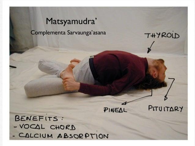 Yoga para uma boa saúde - 5 Fatores para melhorar a sua vida