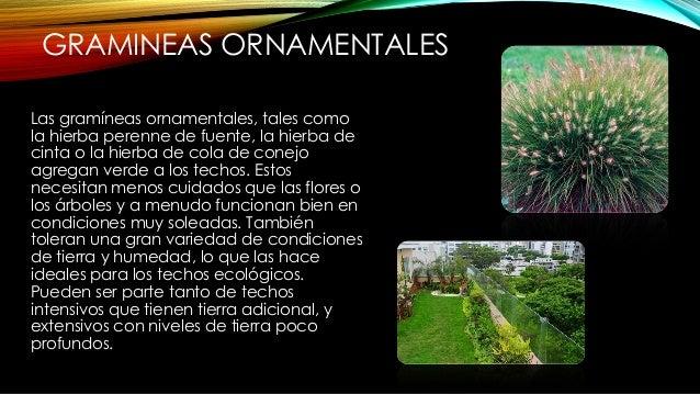 FLORES • Flores: a menudo son parte de los techos verdes, pero las variedades disponibles dependen de la configuración del...