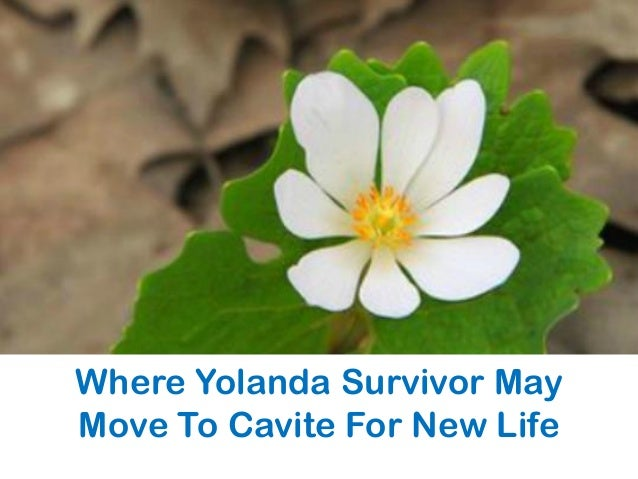 Where Yolanda Survivor May Move To Cavite For New Life