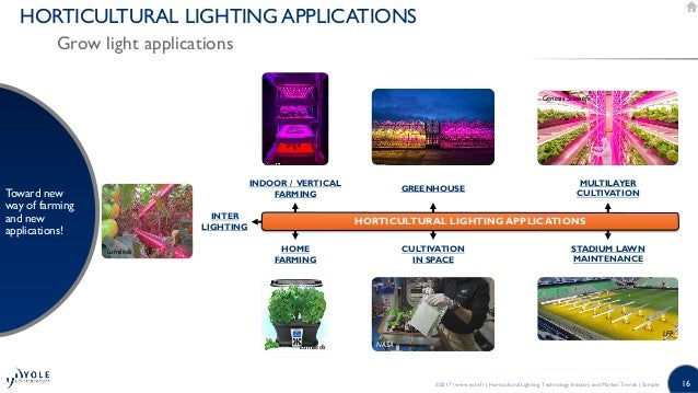 Horticultural Led Lighting Market Industry And