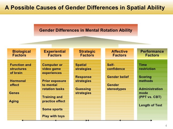 ... 4. A Possible Causes of Gender Differences in Spatial Ability ...