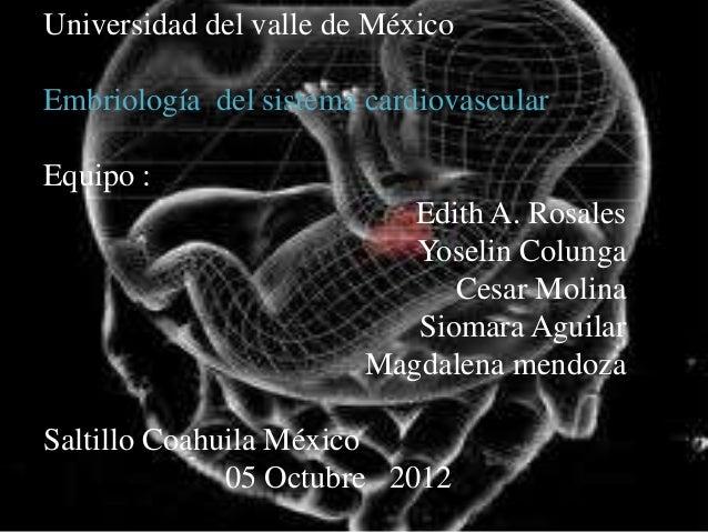 Universidad del valle de MéxicoEmbriología del sistema cardiovascularEquipo :                           Edith A. Rosales  ...