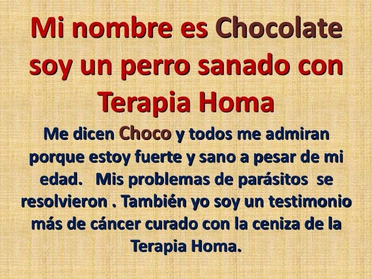 Mi nombre es Chocolate soy un perro sanado con  Terapia Homa<br />Me dicen Choco y todos me admiran porque estoy fuerte y ...