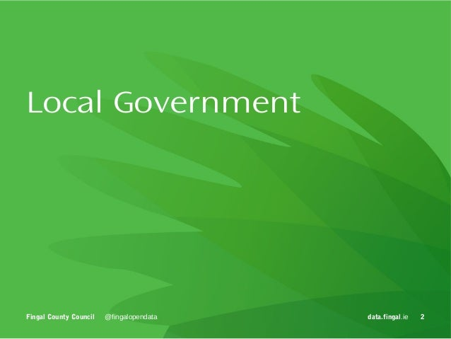 Digitising Local Government Services Slide 2