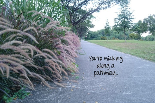 You're walking along a pathway…