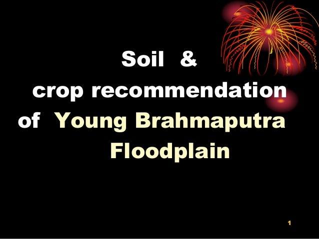 Soil & crop recommendation of Young Brahmaputra Floodplain 1